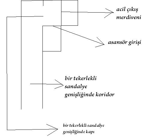 capacity-asansor